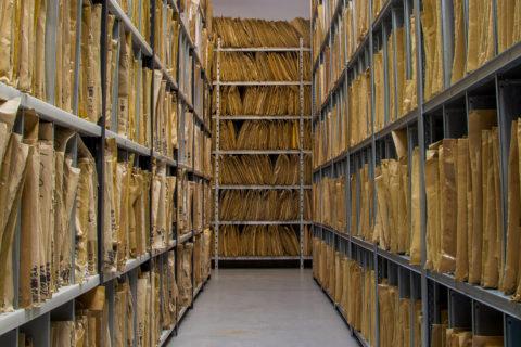 sala z dokumentami
