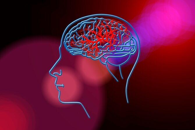 29 października 2020 – Światowy dzień udaru mózgu